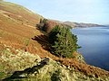 Haweswater below Laythwaite Crags - geograph.org.uk - 1065473.jpg