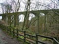 Healey Dell Viaduct - geograph.org.uk - 369689.jpg