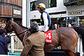 Hello Bud At Aintree (8593987423).jpg