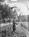 Herfst Kindje met bladeren in Vondelpark, Bestanddeelnr 904-2325.jpg