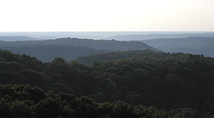 Rolling hills in the Charles C. Deam Wilderness Area of Hoosier National Forest, located in the Indiana Uplands. HickoryRidgeTower-NW.jpg