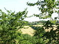 High Oaks from Forest Heights - geograph.org.uk - 209636.jpg