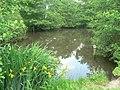 Highcliffe, Nea Lake - geograph.org.uk - 824173.jpg
