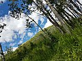 Hiking at Big hill springs 02.jpg