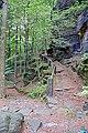 Hiking trail above the village of Hřensko 01.jpg