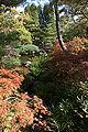 Himeji Koukoen26n4592.jpg