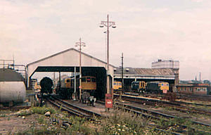 Hither Green railway station - Hither Green TMD in August 1980. Engines present include Class 33 locos and Class 08 shunters