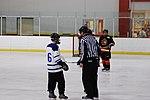 Hockey 20081019 (6) (2957566252).jpg