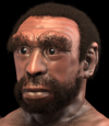 Homo heidelbergensis - forensic facial reconstruction-crop.png