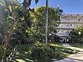 Hotel del Coronado 5 2019-04-16.jpg