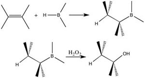 Herbert C. Brown - In hydroboration-oxidation, the OH group adds to the less-substituted carbon in the double bond.