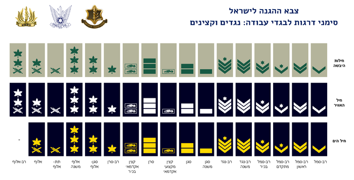 IDF Field ranks.png