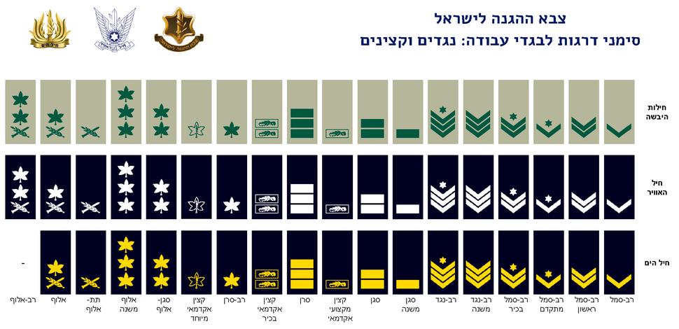 IDF Field ranks