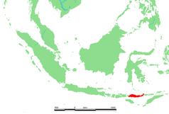 Isla de Flores, donde fue descubierto H. floresiensis.