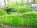IGS Garten klangvoll.JPG