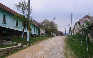 Carașova - Road in Iabalcea village