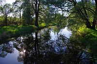 Ilmatsalu jõgi 2014 (2).jpg