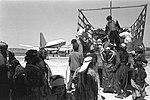 Immigrants 1951.jpg