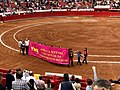 In favor of Bullfights2 - Plaza Mexico.jpg