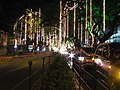 India - Chennai - Pongal festival lights 03 (6319630718).jpg