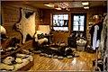 Inside Longyearbyen Skin shop (9509041712).jpg
