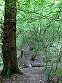 It is as Steep as it Looks - geograph.org.uk - 1320110.jpg