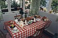 Jacob Truedson Demitz 44th birthday table 1992 (1).jpg
