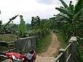 Jalan menuju situ - panoramio.jpg