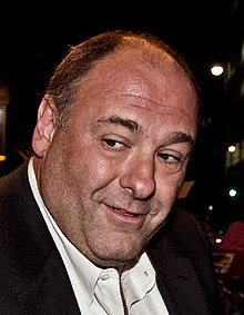James Gandolfini vid Toronto International Film Festival 2011.