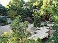 Japanese Garden - J. C. Raulston Arboretum - DSC06269.JPG