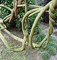 Japanischer Garten des Gartenhotels Heusser - panoramio (4).jpg