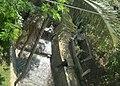 Jembatan Pemkot Cimahi - panoramio (6).jpg