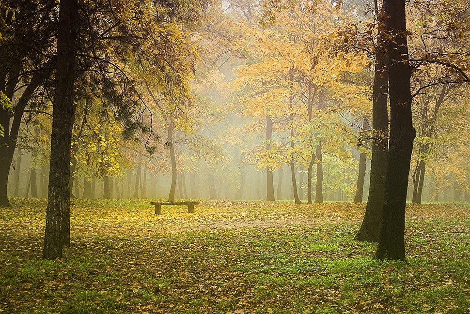 Jesen u Košutnjaku Autumn in Košutnjak