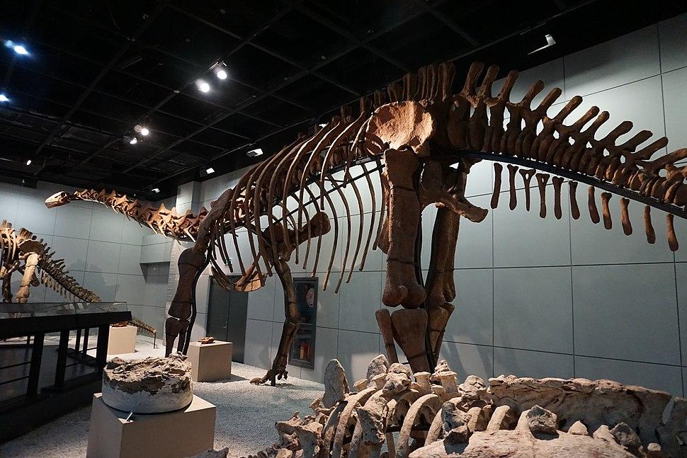 Jiangshanosaurus lixianensis zmnh006