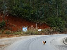 why did the chicken cross the road wikipedia
