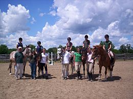 Jim Elder at the Ballycroy Equestrian Center.jpg