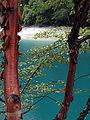 Jiuzhaigou Valley 2002-09-12 08.jpg