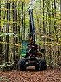 John Deere Forester 20191022-RM-227144.jpg