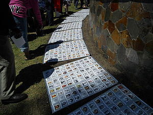 Jonestown - Pictures of those who died in Jonestown laid out at a 2011 memorial service.