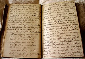 Joseph Jenkins - 24 November 1878 diary entry written by Joseph Jenkins while in Castlemaine Hospital