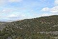 Jumbo Grade Trail - panoramio (25).jpg