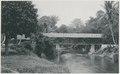 KITLV - 12639 - Kleingrothe, C.J. - Medan - Kampung Lalang bridge in Deli - 1903.tif