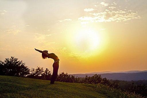 Kailash Integral Yoga