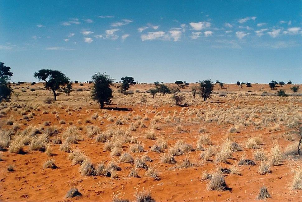 Kalahari E02 00