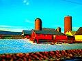 Kalscheur Dairy Farm - panoramio (1).jpg