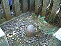 Kaname-ishi-stone,katori-jingu,katori-city.japan.JPG