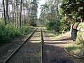 Kapellen militaire spoorlijn 1.JPG