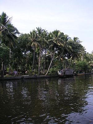 Shasthamkotta lake