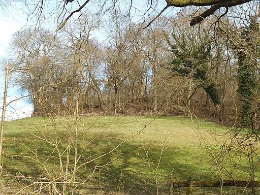 King John's Hill, East Worldham, Hampshire 03