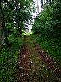 Klášterská Lhota, cesta ke hřbitovu.jpg